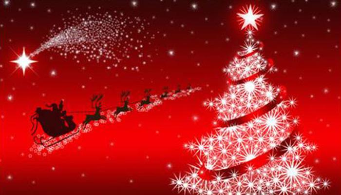 arbre de noel entreprise Organisation Arbre de Noël Entreprise Aix en Provence Sophia  arbre de noel entreprise